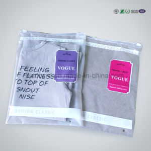 Reclosable Colorful Printed PE Ziplock Plastic Packaging Bag pictures & photos