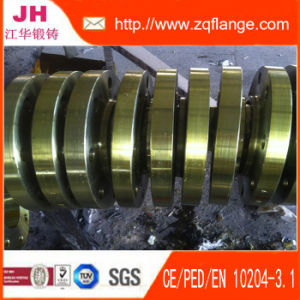 ANSI Flat Flange (4 Inches) pictures & photos