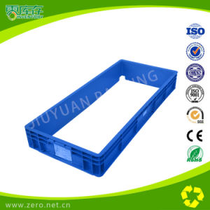 Blue New Arrival Customized PP EU Container pictures & photos