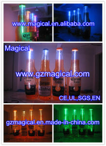 Customized Advertising Inflatable Beer Bottle Model (MIC-368) pictures & photos