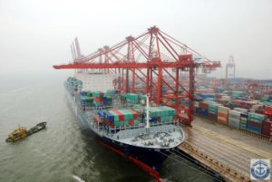 Freight Forwarder/ Shipping Agent / Air Freight From China to Hamburg, Rotterdam,Southampton,Fos, Antwerp,Nitra,Prague,Venice,Barceloma,Malta,Dublin,Oslo,Odesa pictures & photos