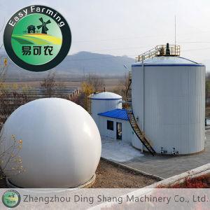 Water Soluble Fertilizer Equipment pictures & photos