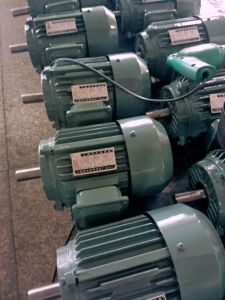 3/4-270HP Tefc-IP55 Three Phase AC Motor pictures & photos