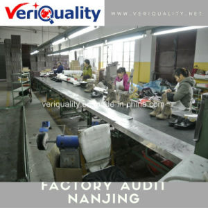 Nanjing Factory Audit /Factory Evaluation Service/Goods Inspection in China pictures & photos
