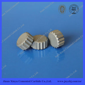 Tungsten Carbide Bits for Oilfield Drilling Bits pictures & photos