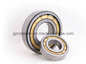 SKF Brand Cylindrical Roller Bearing (NCP205)