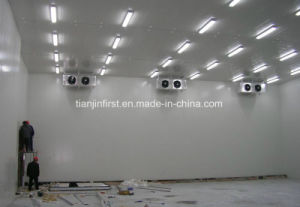 Cold Storage Equipme/ Cold Room for Low Price pictures & photos