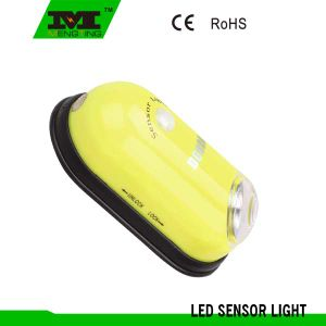 3 in 1 Motion Sensor Light with PIR