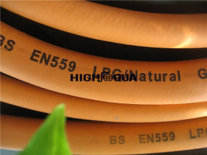 High Quality Flexible LPG Hose pictures & photos