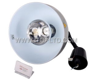 Commercial Cylinder Heating Kitchen Lamp (CHL) pictures & photos
