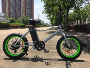 Grey Color 20inch Fat Tyre Mountain Electric Bicycle American Style pictures & photos