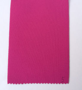 Polyester Fabric Bonded with SBR, Cr, SCR Neoprene pictures & photos