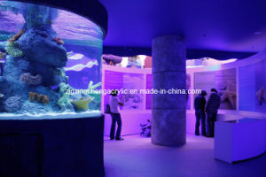 Curved Acrylic Sheet/Curved Glass Aquarium/Curved Plexiglass pictures & photos