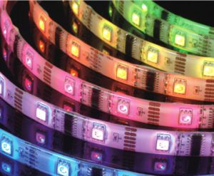 RGB LED Strip Waterproof LED Light pictures & photos