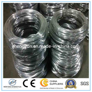 High Carbon Material Quality Galvanized Spring Steel Wire pictures & photos