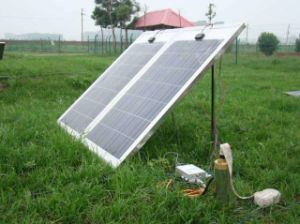 10m 24V DC Solar Water Pump 5cbm Per Hour 216W Lowest Voice pictures & photos