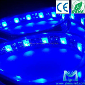 Waterproof SMD 5050 LED Strip Light (LS-SB5060)