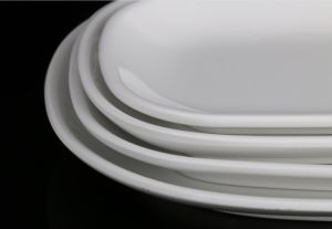 Melamine Plate for Hotel and Restaurant Tableware (TP-300) pictures & photos