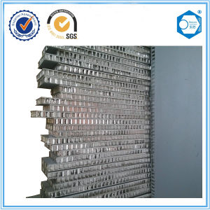 Aluminum Honeycomb Core Sandwich Panel for Office Partition pictures & photos