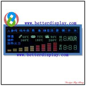 Va LCD Panel Custom Segment LCD Display Module pictures & photos