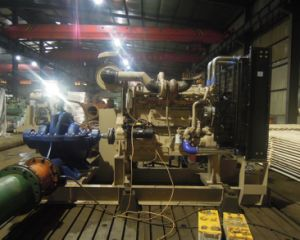 Diesel Water Pump pictures & photos