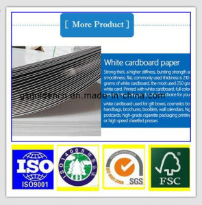 Paper Box Packaging 230GSM C1s Ivory Board / Folding Box Board / Fbb pictures & photos