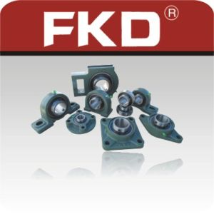 Pillow Block Bearings / Brand: Fkd pictures & photos