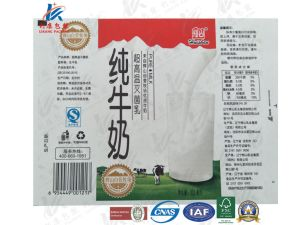 250ml Aseptic Brick Carton for Fresh Milk pictures & photos