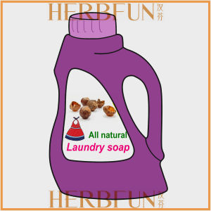 100% Natural Laundry Detergent