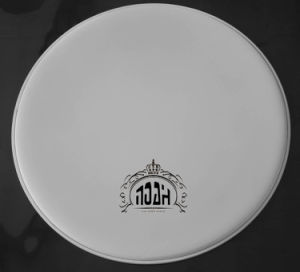 White Coated Drum Head (DH-104) pictures & photos