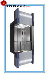 630kg, 800kg, 1000kg, 1250kg Capacity Stainless Steel Panoramic Elevator