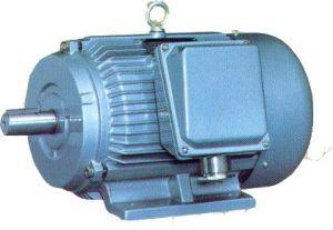 Marine Motor-Marine Three-Phase Asynchronous Motors pictures & photos