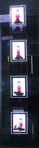 Cable Suspended LED Crystal Light Box for Salon Window Displays pictures & photos