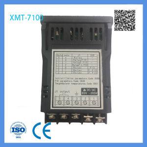 Cheap Sale Pid, Digital Temperature Controller 0-10V PT100 pictures & photos