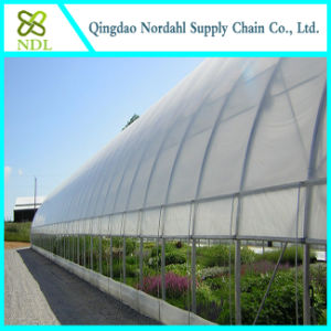 Agricultural Commercial Plastic Film Greenhouse pictures & photos