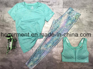 Quickly Dry Sports Suit for Women/Lady, Yoga Wear, Running Wear pictures & photos