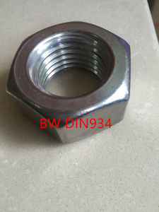 Stainless Steel Nut DIN934 pictures & photos