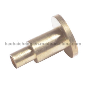 Brass Solid Flat Head Rivet with Latest Technology pictures & photos