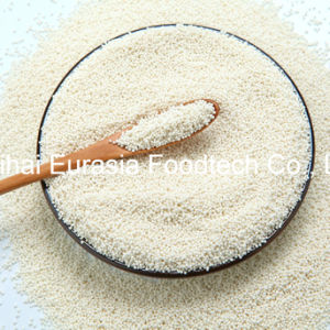 Health Care Product Magnesium Citrate Sustained Release Pellets pictures & photos