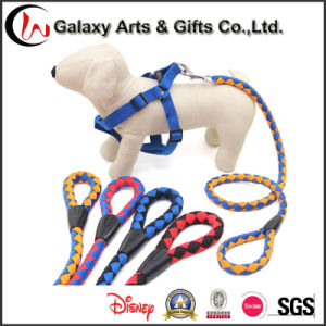 Climbing Rope Dog Leash Cusotm Polyester Rope Large Breed Leash for Sale pictures & photos