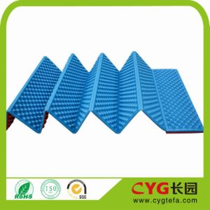 Cyg PE Moistureproof Camping Mat/Outdoor Mat pictures & photos