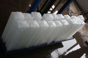 Brine System Ice Block Machine (QZB) pictures & photos