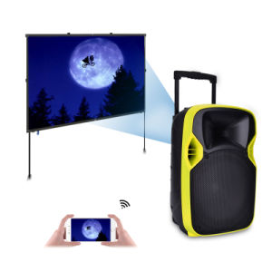 Competitive 12 Inches Plastic LED Projection PA Speaker with Multi-Function pictures & photos