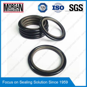 Rg4/on Profile Hydraulic Cylinder Piston Rod Seal Ring pictures & photos