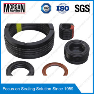 Ek, Ekv Series Hydraulic Piston Chevron V Packing Seal pictures & photos