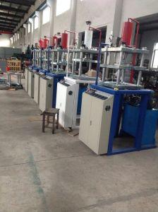 Automatic Vertical PTFE Rod RAM Extrusion Machine (HX-30L) pictures & photos