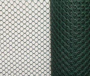 Hexagonal Wire Mesh/Hexagonal Wire Netting/Gabion Mesh pictures & photos
