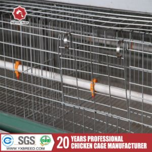 Hot Search Broiler Chicken Cage for Different Types Poultry Farm House Design pictures & photos