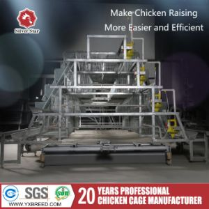 Automatic Broiler Chicken Cage pictures & photos