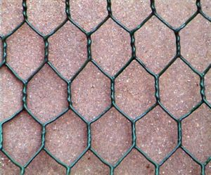 Lobster Trap/Crab/Fish Trap PVC Coated Hot Dipped Galvanized Hexagonal Wire Mesh pictures & photos
